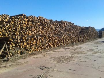 Gil forestal TRabajos de biomasa plata en el matarraña